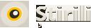 Stirili Logo